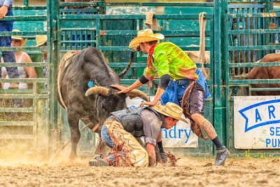 Erick Schwindt protects a cowboy