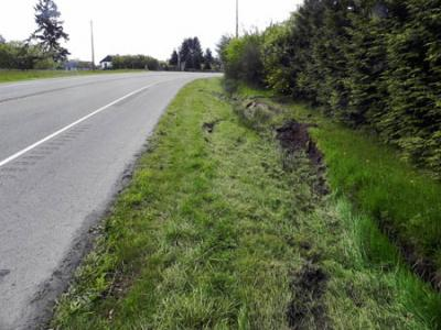 Ruts are visible in the grass where a Mini Van left the road on Vashon Hwy, on the north end of Vashon Island. Peter Ray Photo